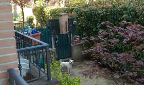 Lesignano de'Bagni (PR) Appartamento con giardino